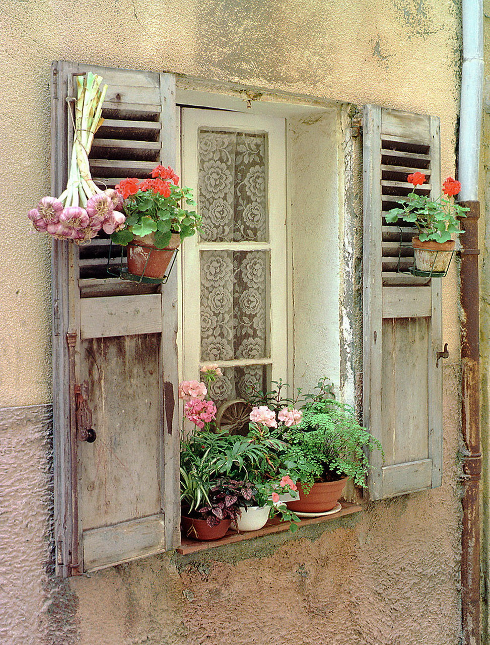 Pencere resmi doors, windows and balconies with flowers pint.